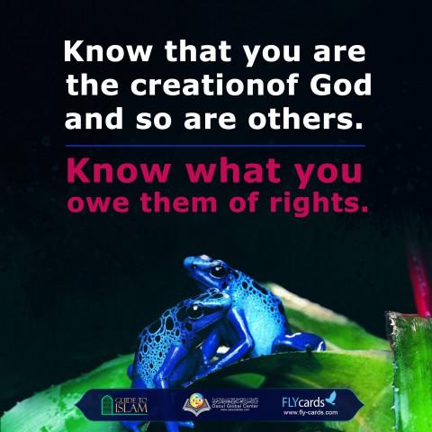 تعرف على مخلوقات الله