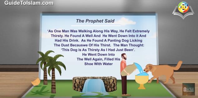 الرفق بالحيوان في الإسلام